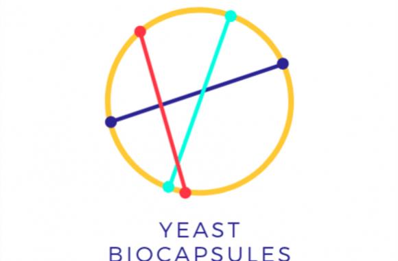 Yeast Biocapsules